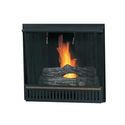 Paramount 23 In Gel Fireplace Insert Home Depot Canada