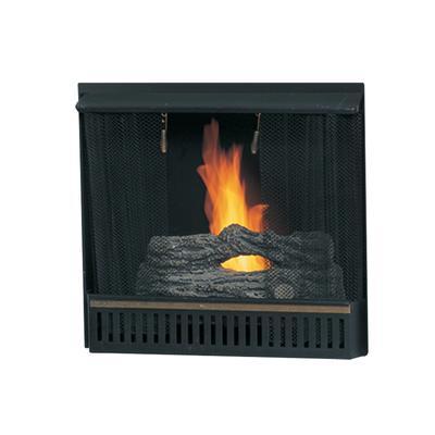 Paramount 23 In Gel Fireplace Insert Home Depot Canada Ottawa